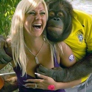Macaco vê, homem faz