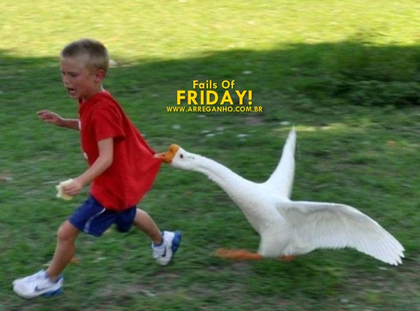 Fails of Friday #39
