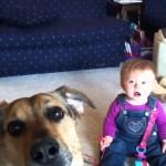 Bolhas de Sabão + Cachorro + Bebê = Risada na Certa