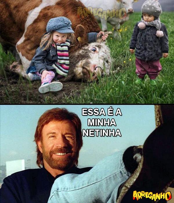 Nunca contrarie a neta do Chuck Norris