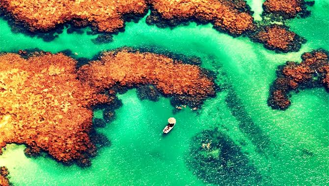 Aprenda como viajar pelo Brasil e mundo afora, gastando pouco!