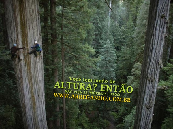 Você tem medo de altura? Então não veja as próximas fotos!