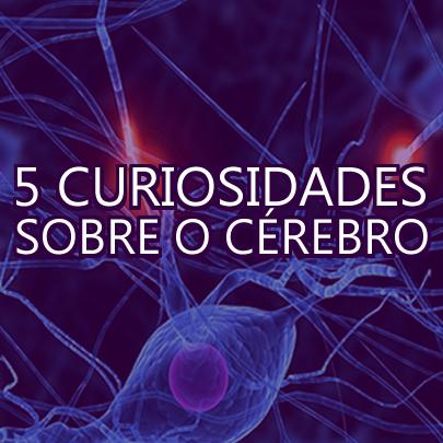 5 curiosidades sobre o nosso cérebro que provavelmente você não sabia