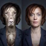 Cachorros, seus donos e algo em comum
