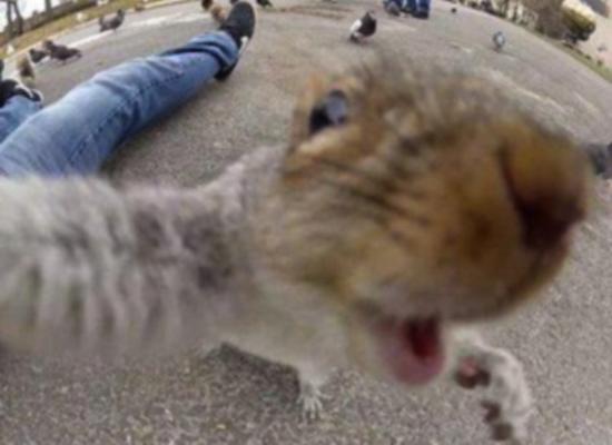 selfie08