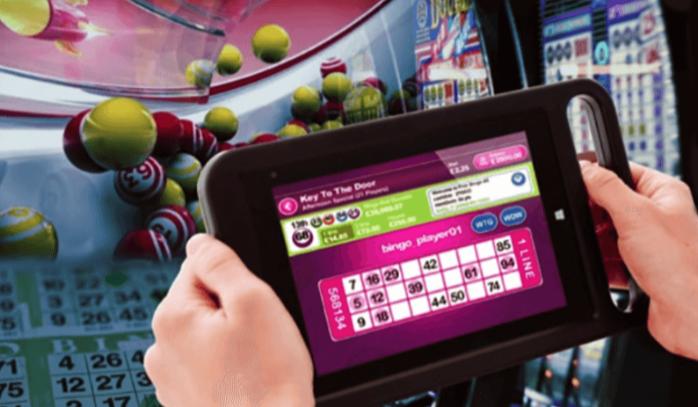 Evite errar no bingo online