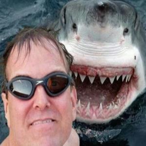 10 pessoas que morreram de maneira bizarra quando foram tirar uma selfie